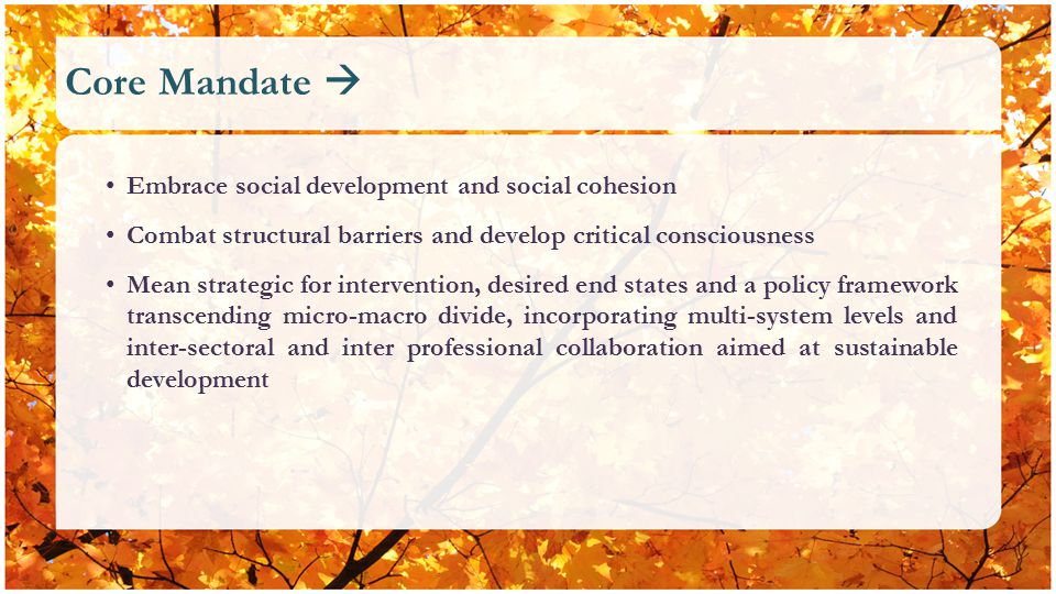 Core Mandate  Embrace social development and social cohesion Combat structural barriers and develop critical consciousness Mean strategic for intervention, desired end states and a policy framework transcending micro-macro divide, incorporating multi-system levels and inter-sectoral and inter professional collaboration aimed at sustainable development