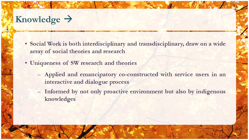 Knowledge  Social Work is both interdisciplinary and transdisciplinary, draw on a wide array of social theories and research Uniqueness of SW research and theories –Applied and emancipatory co-constructed with service users in an interactive and dialogue process –Informed by not only proactive environment but also by indigenous knowledges