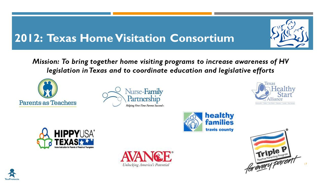2012: Texas Home Visitation Consortium Mission: To bring together home visiting programs to increase awareness of HV legislation in Texas and to coordinate education and legislative efforts 17