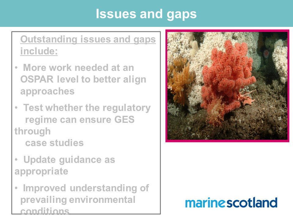 Issues and gaps Outstanding issues and gaps include: More work needed at an OSPAR level to better align approaches Test whether the regulatory regime can ensure GES through case studies Update guidance as appropriate Improved understanding of prevailing environmental conditions Improved ability to assess and manage cumulative effects.