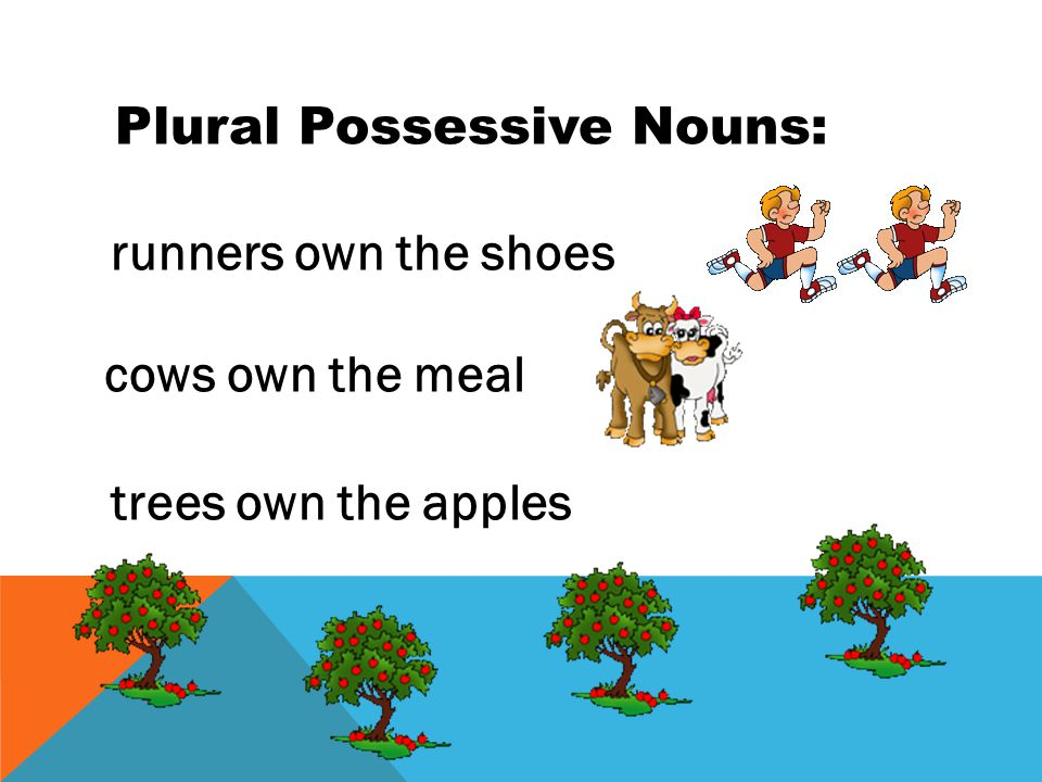 Rules 1.To show possession of singular nouns add 's.