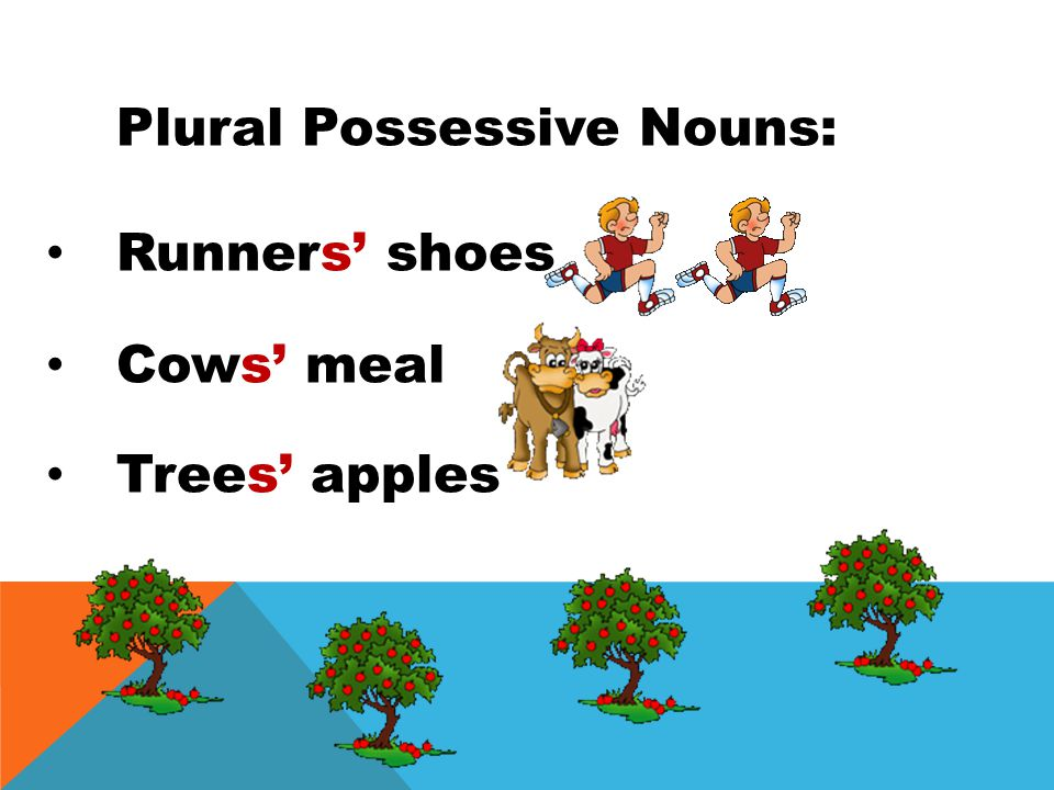 Plural Possessive Nouns: runners own the shoes cows own the meal trees own the apples