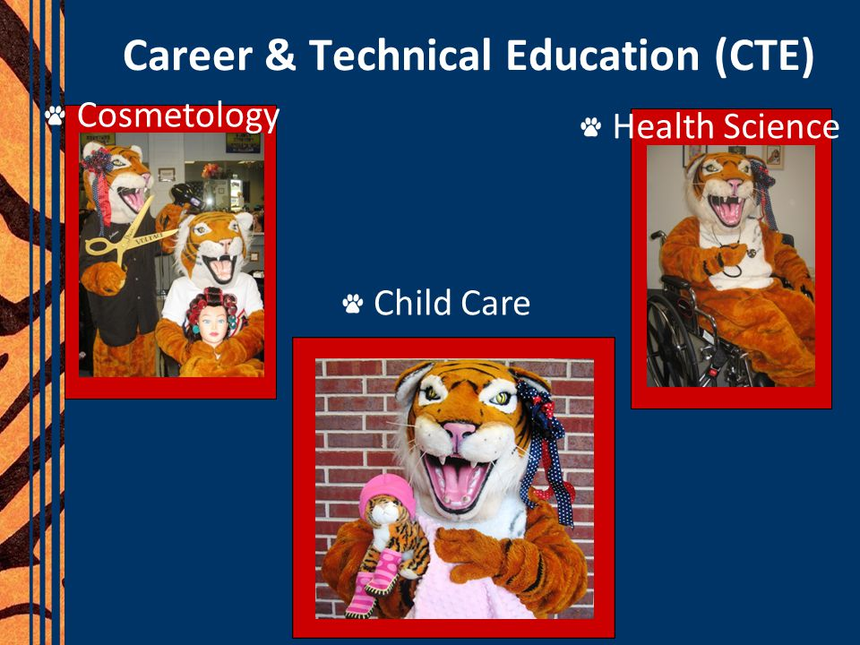 Career & Technical Education (CTE) Cosmetology Health Science Child Care