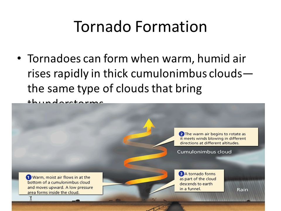 - Storms Tornado Formation Tornadoes can form when warm, humid air rises rapidly in thick cumulonimbus clouds— the same type of clouds that bring thunderstorms.