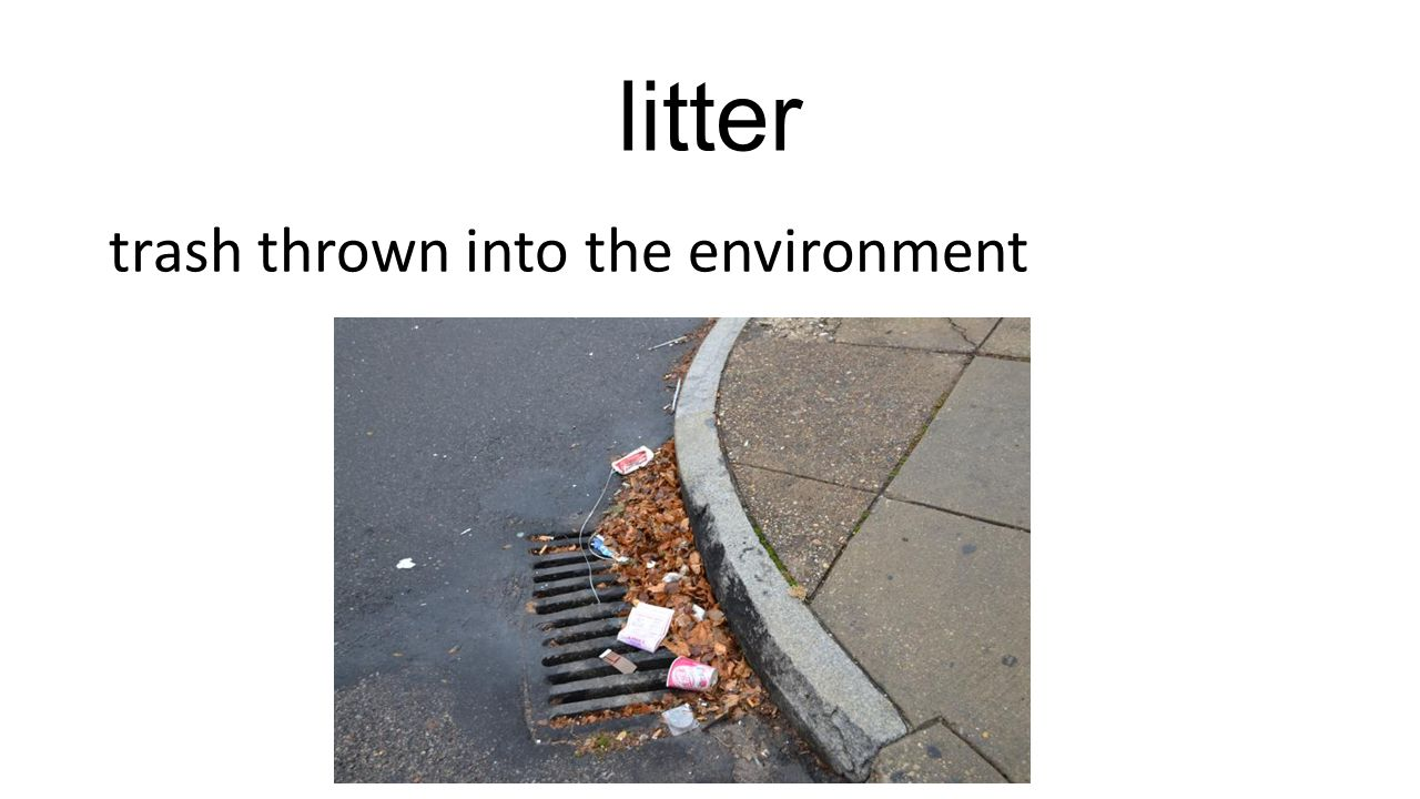 litter trash thrown into the environment