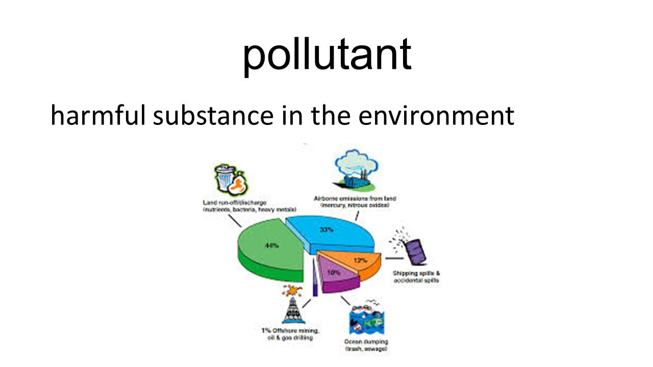 pollutant harmful substance in the environment
