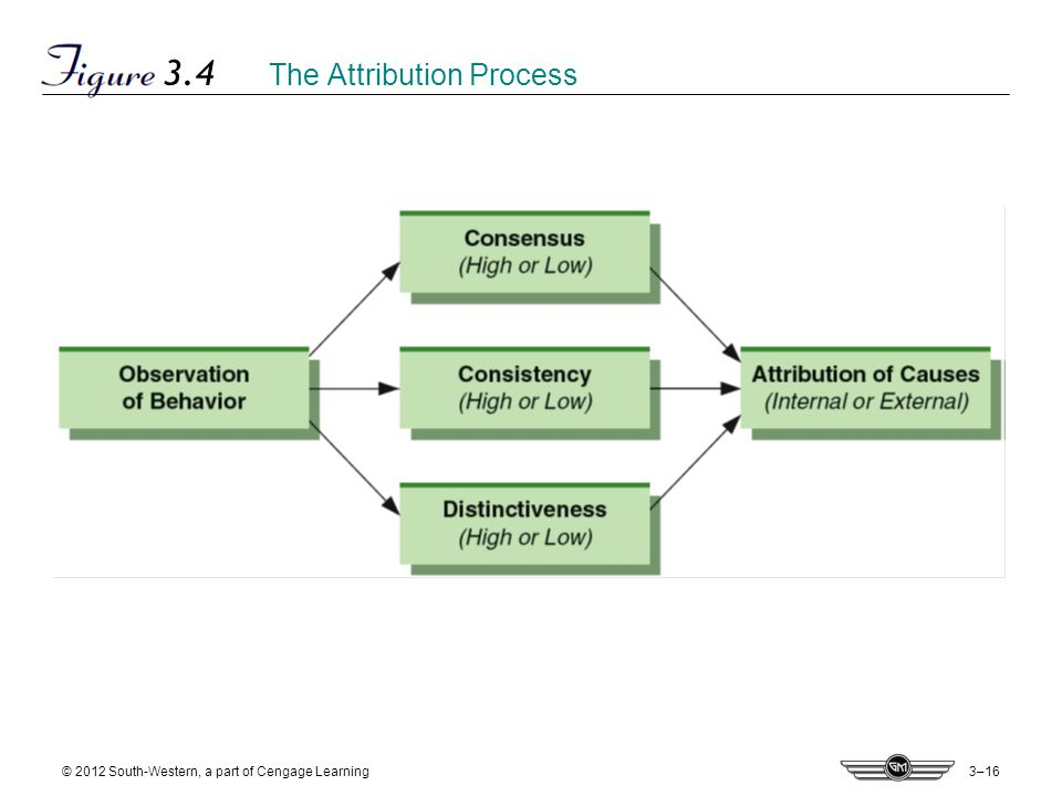 3–16 © 2012 South-Western, a part of Cengage Learning 3.4 The Attribution Process