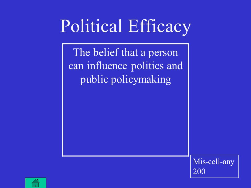 Political Efficacy The belief that a person can influence politics and public policymaking Mis-cell-any 200