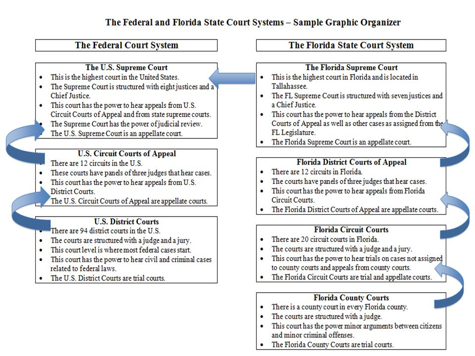 Circuit Court System Federal Crimes - Great Installation Of Wiring ...
