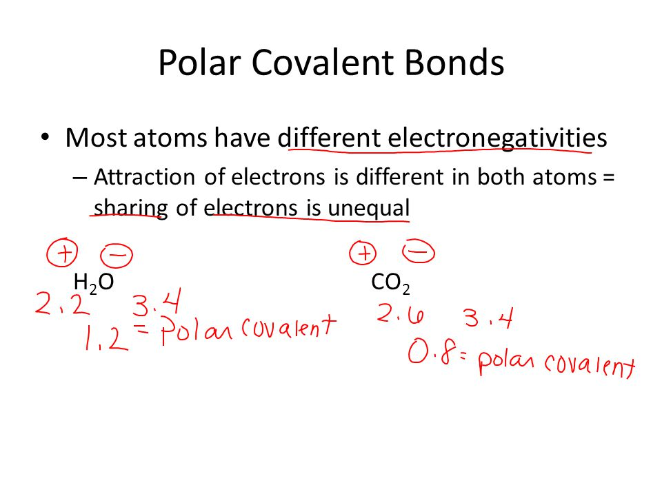 Polar Covalent Bonds Most atoms have different electronegativities – Attraction of electrons is different in both atoms = sharing of electrons is unequal H 2 OCO 2