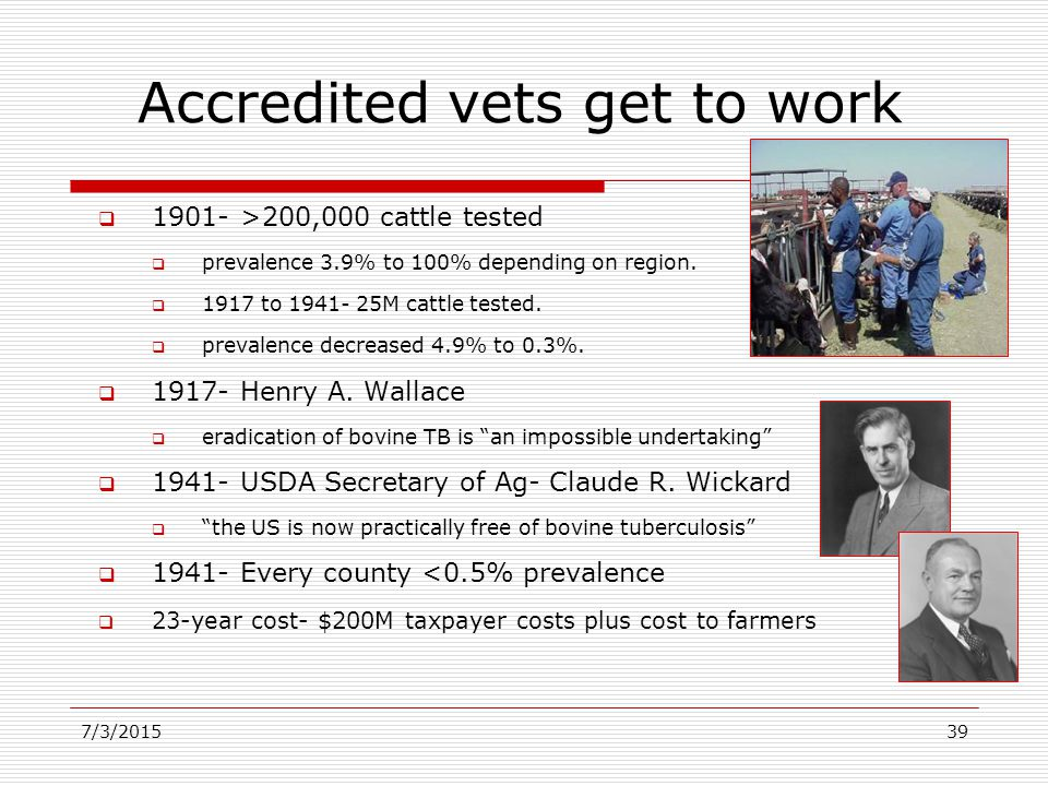 7/3/201539 Accredited vets get to work  1901- >200,000 cattle tested  prevalence 3.9% to 100% depending on region.