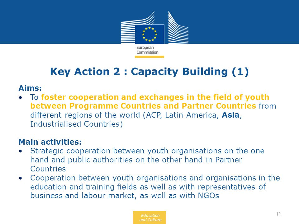 Education and Culture Aims: To foster cooperation and exchanges in the field of youth between Programme Countries and Partner Countries from different regions of the world (ACP, Latin America, Asia, Industrialised Countries) Main activities: Strategic cooperation between youth organisations on the one hand and public authorities on the other hand in Partner Countries Cooperation between youth organisations and organisations in the education and training fields as well as with representatives of business and labour market, as well as with NGOs Key Action 2 : Capacity Building (1) 11