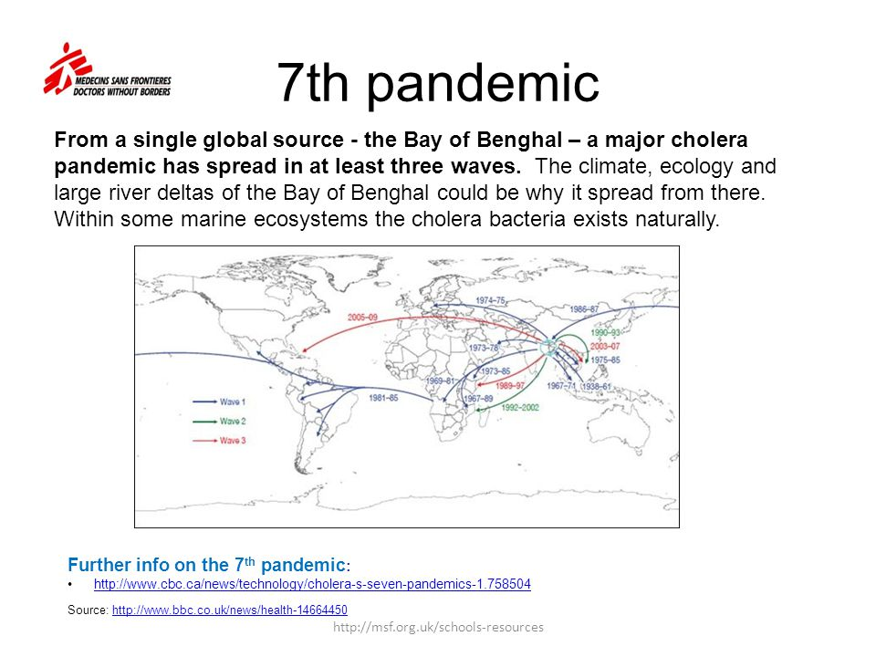 7th pandemic Source:   Further info on the 7 th pandemic :   From a single global source - the Bay of Benghal – a major cholera pandemic has spread in at least three waves.