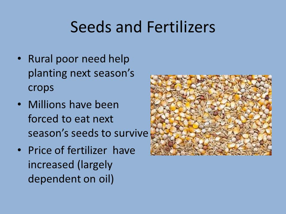 Seeds and Fertilizers Rural poor need help planting next season's crops Millions have been forced to eat next season's seeds to survive Price of fertilizer have increased (largely dependent on oil)