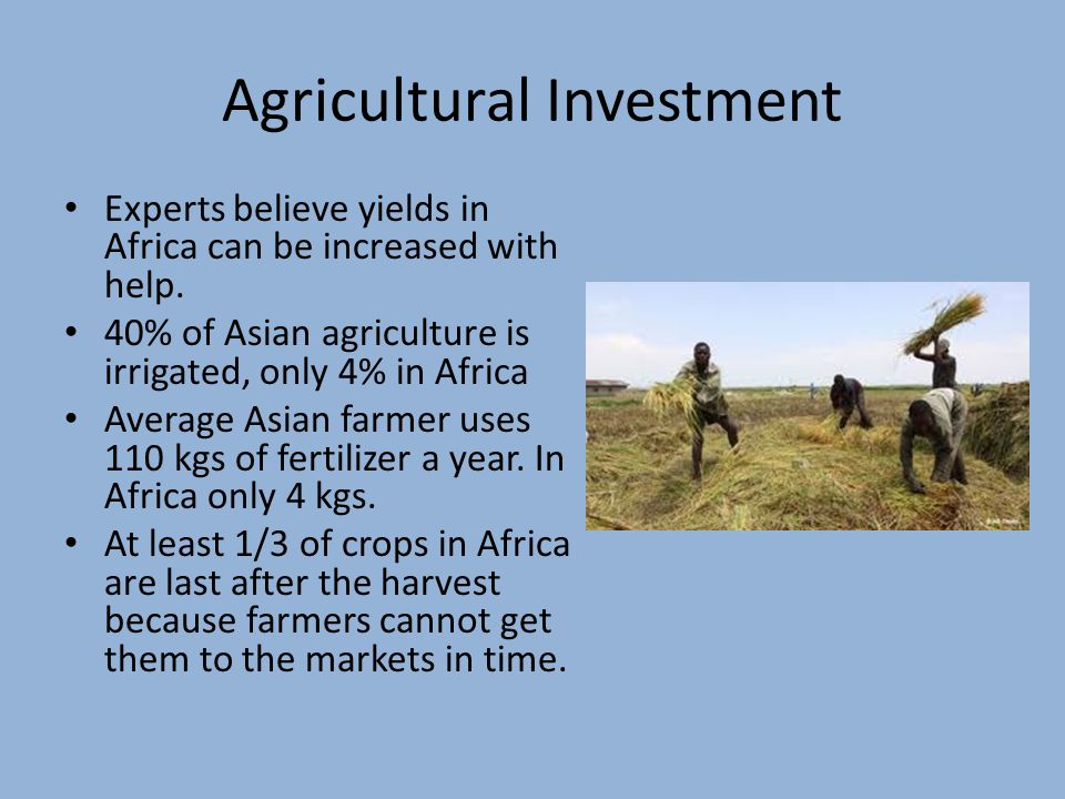 Agricultural Investment Experts believe yields in Africa can be increased with help.