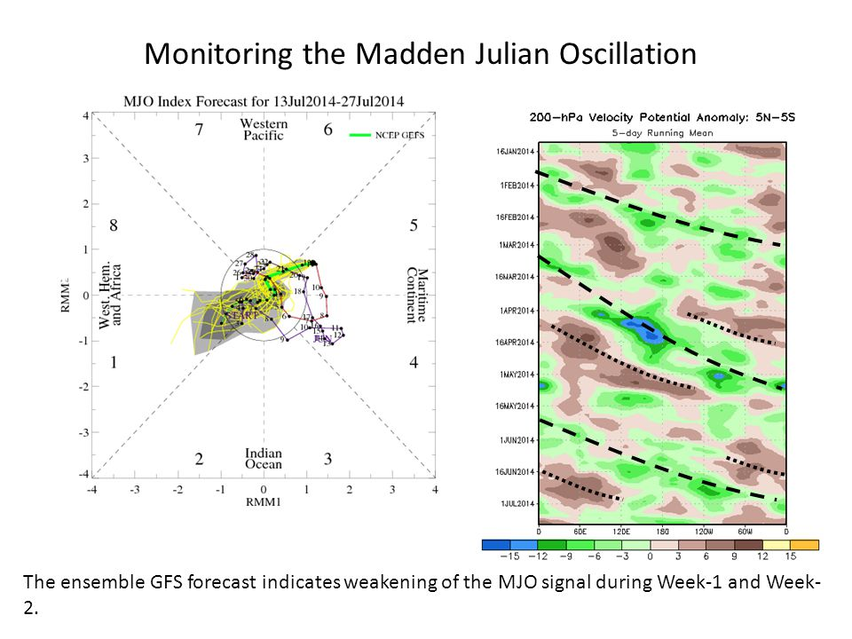 Time Longitude Monitoring the Madden Julian Oscillation The ensemble GFS forecast indicates weakening of the MJO signal during Week-1 and Week- 2.