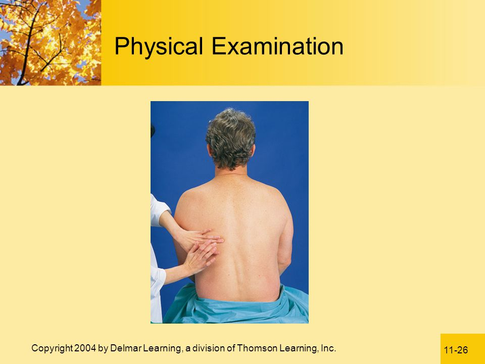 11-26 Copyright 2004 by Delmar Learning, a division of Thomson Learning, Inc. Physical Examination