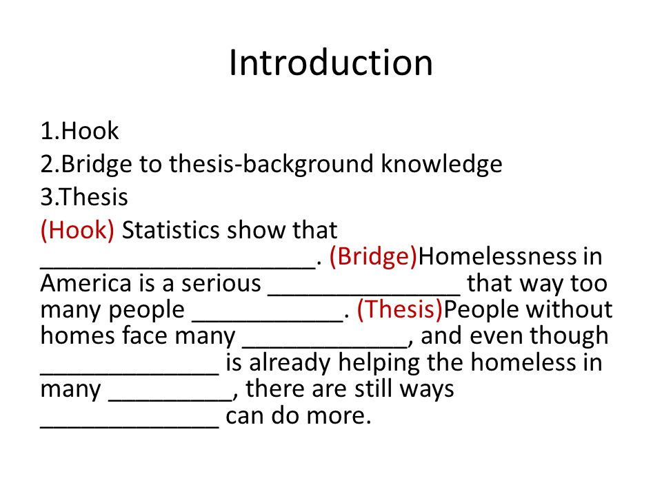 Helping the Homeless Essay