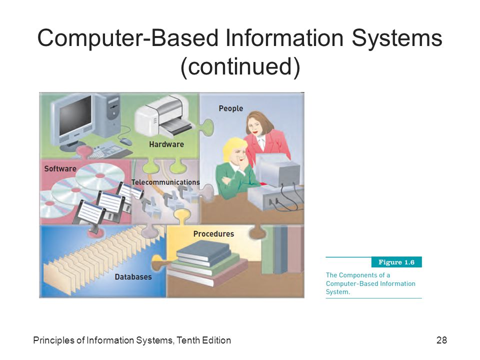 Principles of Information Systems, Tenth Edition28 Computer-Based Information Systems (continued)