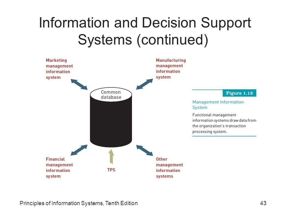 Principles of Information Systems, Tenth Edition43 Information and Decision Support Systems (continued)