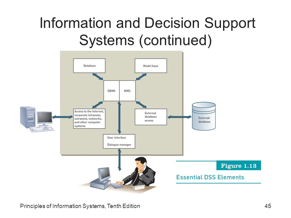Principles of Information Systems, Tenth Edition45 Information and Decision Support Systems (continued)