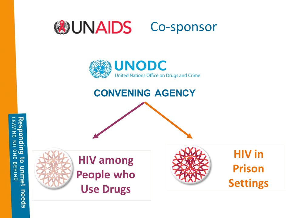 Co-sponsor HIV among People who Use Drugs HIV in Prison Settings CONVENING AGENCY
