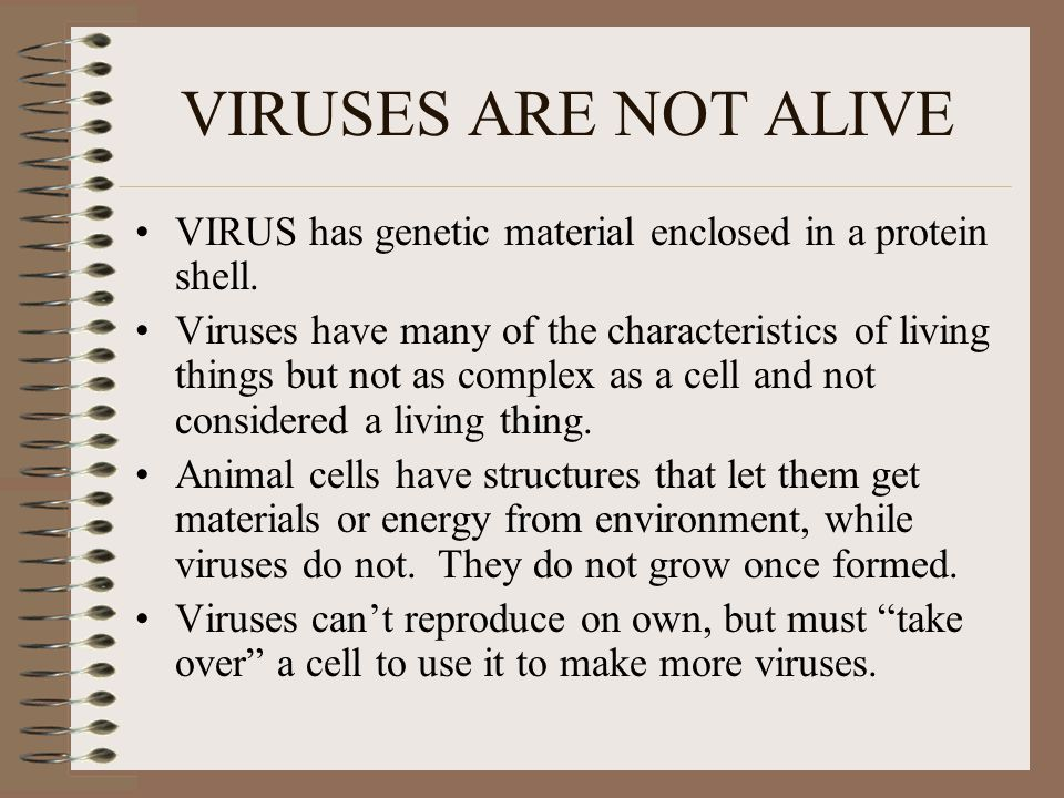 are viruses living things why or why not
