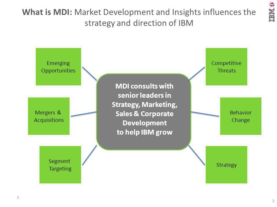 IBM Japan Marketing & Communications Market Development and Insights