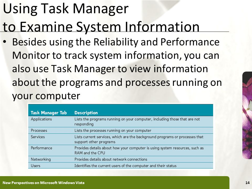 XP Using Task Manager to Examine System Information Besides using the Reliability and Performance Monitor to track system information, you can also use Task Manager to view information about the programs and processes running on your computer New Perspectives on Microsoft Windows Vista14