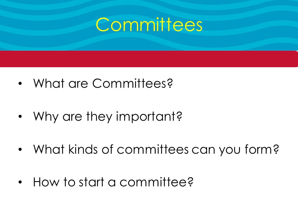What are Committees. Why are they important. What kinds of committees can you form.