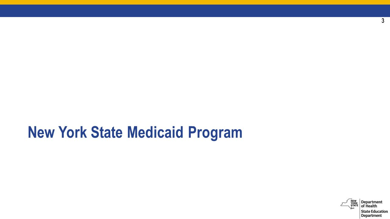 3 New York State Medicaid Program