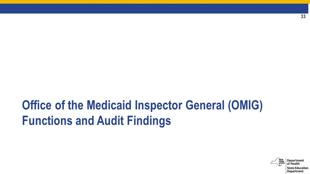 33 Office of the Medicaid Inspector General (OMIG) Functions and Audit Findings