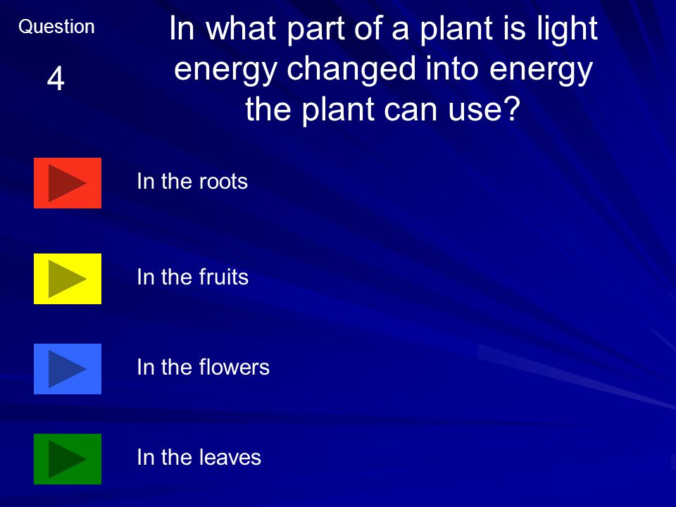 Plants get the energy they need from the air sun food they eat minerals in the soil Question 3