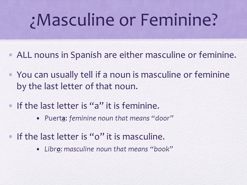 is pupitre masculine or feminine