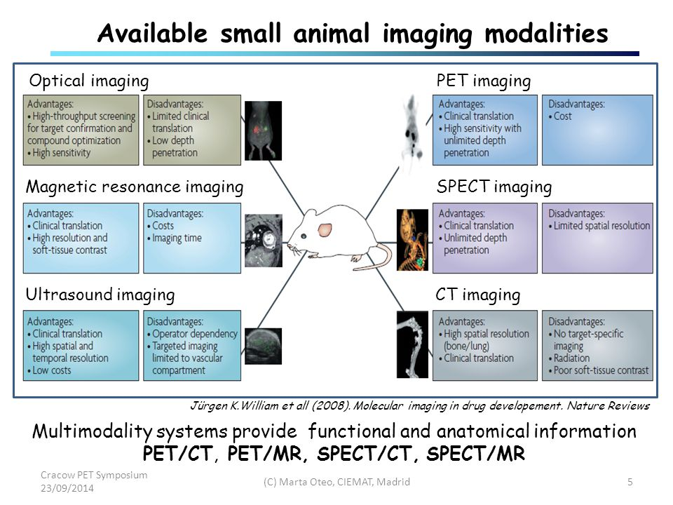 Small Animal Pet As Non Invasive Tool For Preclinical Imaging Marta Oteo Vives Biomedical Applications Of Radioisotopes And Pharmacokinetic Ppt Download