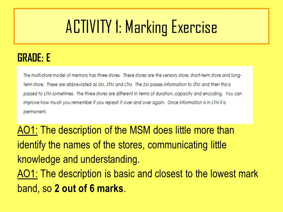 ACTIVITY 1: Marking Exercise GRADE: E AO1: The description of the MSM does little more than identify the names of the stores, communicating little knowledge and understanding.