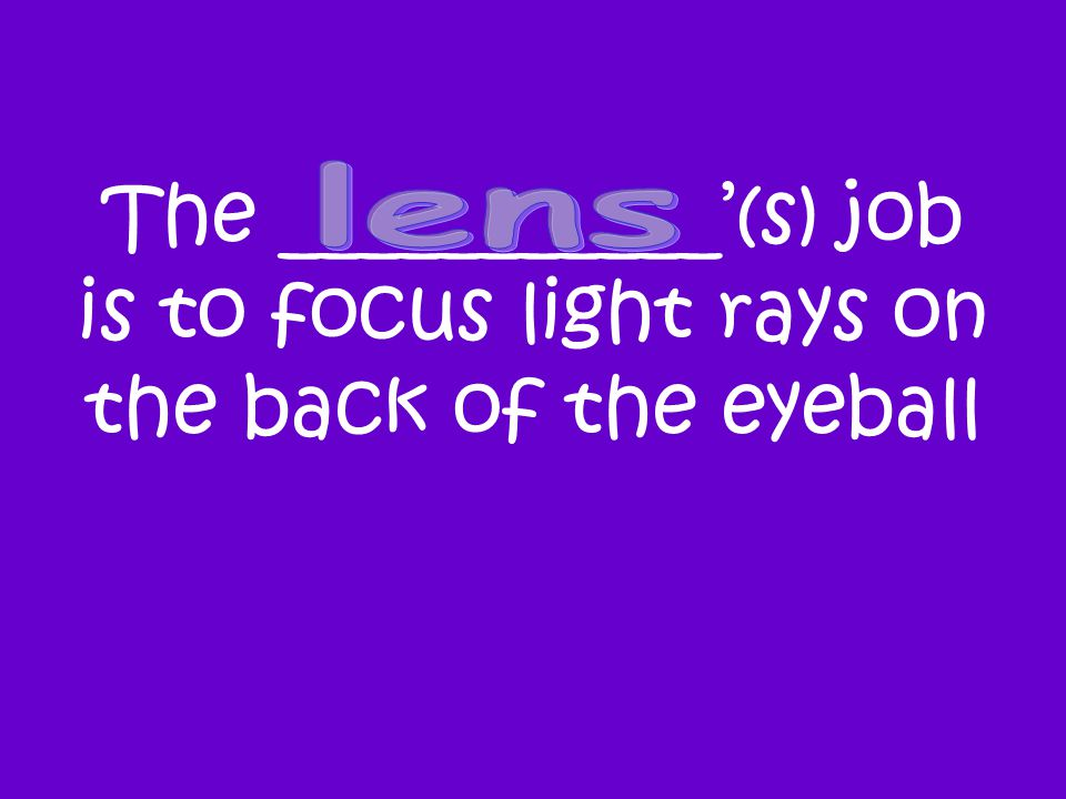 The ___________'(s) job is to focus light rays on the back of the eyeball