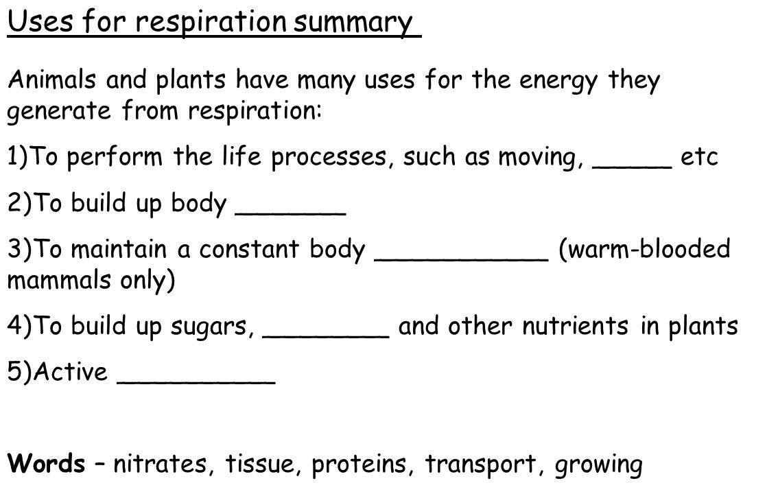 Animals and plants have many uses for the energy they generate from respiration: 1)To perform the life processes, such as moving, _____ etc 2)To build up body _______ 3)To maintain a constant body ___________ (warm-blooded mammals only) 4)To build up sugars, ________ and other nutrients in plants 5)Active __________ Words – nitrates, tissue, proteins, transport, growing Uses for respiration summary