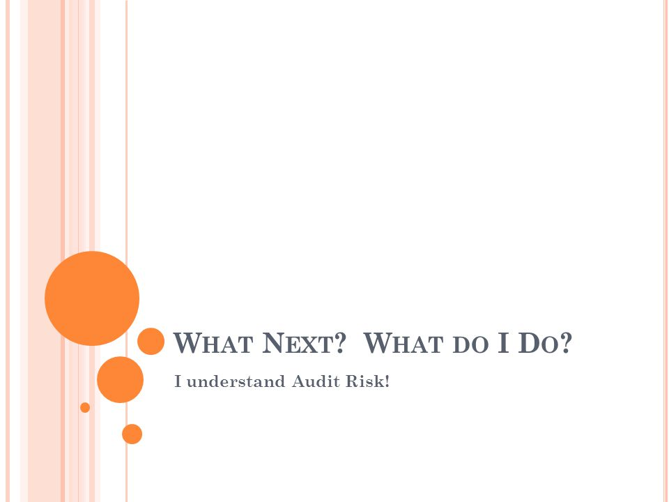 W HAT N EXT W HAT DO I D O I understand Audit Risk!