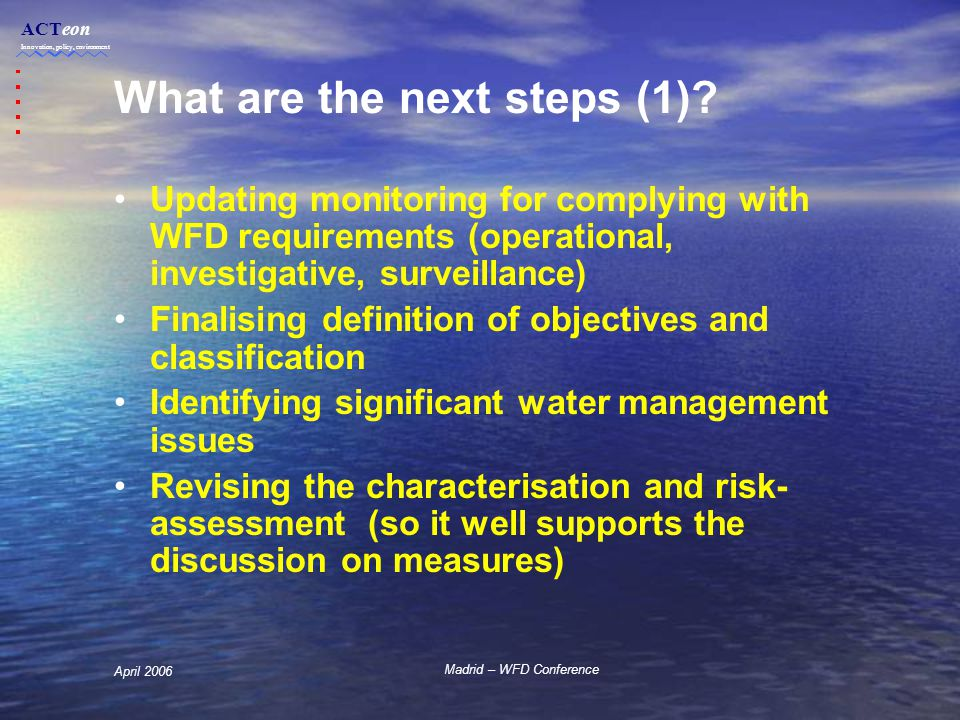 ACTeon Innovation, policy, environment Madrid – WFD Conference April 2006 What are the next steps (1).