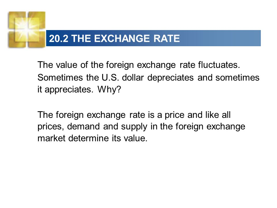 20.2 THE EXCHANGE RATE The value of the foreign exchange rate fluctuates.
