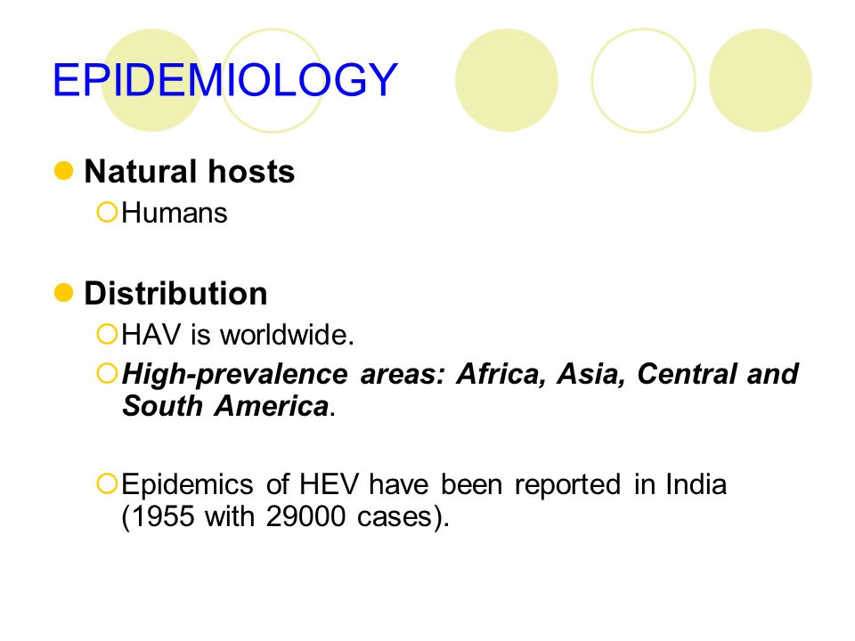 EPIDEMIOLOGY Natural hosts  Humans Distribution  HAV is worldwide.