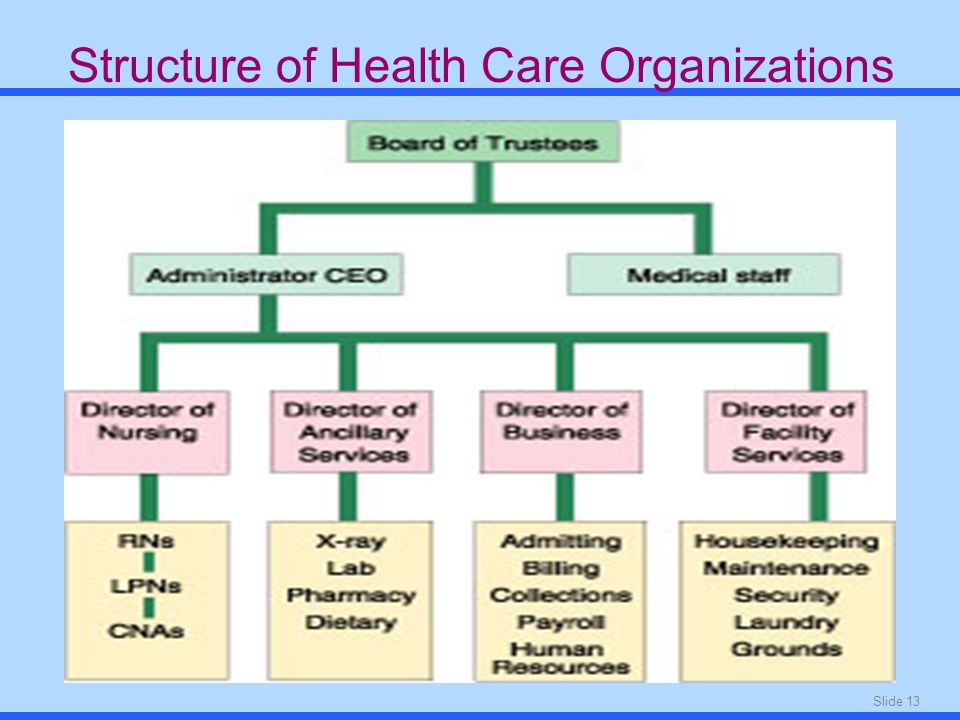 Slide 13 Structure of Health Care Organizations