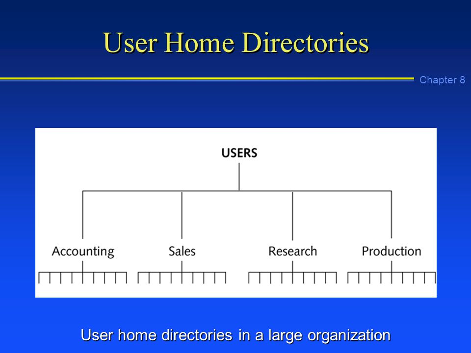 Chapter 8 User Home Directories User home directories in a large organization