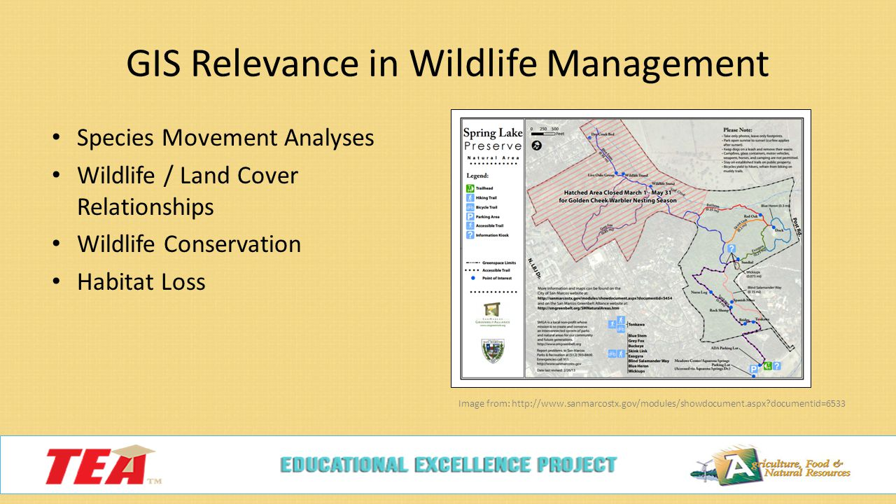 GIS in Wildlife Management c 6 H  Endangered Species What are they