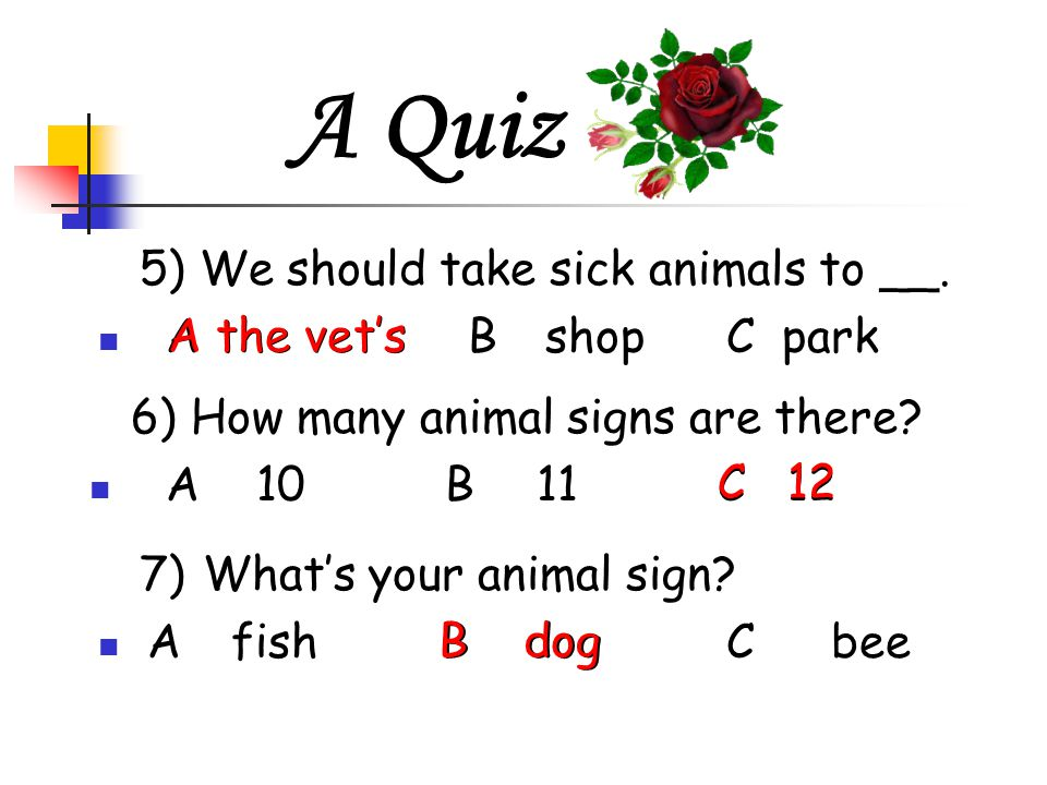 Man's best friend By Helen Fan  A Quiz 1)Which animals live in the