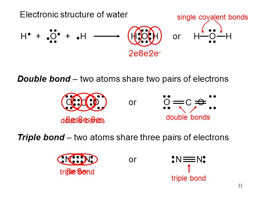 11 8e - H H O ++ O HH O HHor 2e - Electronic structure of water Double bond – two atoms share two pairs of electrons single covalent bonds O C O or O C O 8e - double bonds Triple bond – two atoms share three pairs of electrons N N 8e - N N triple bond or