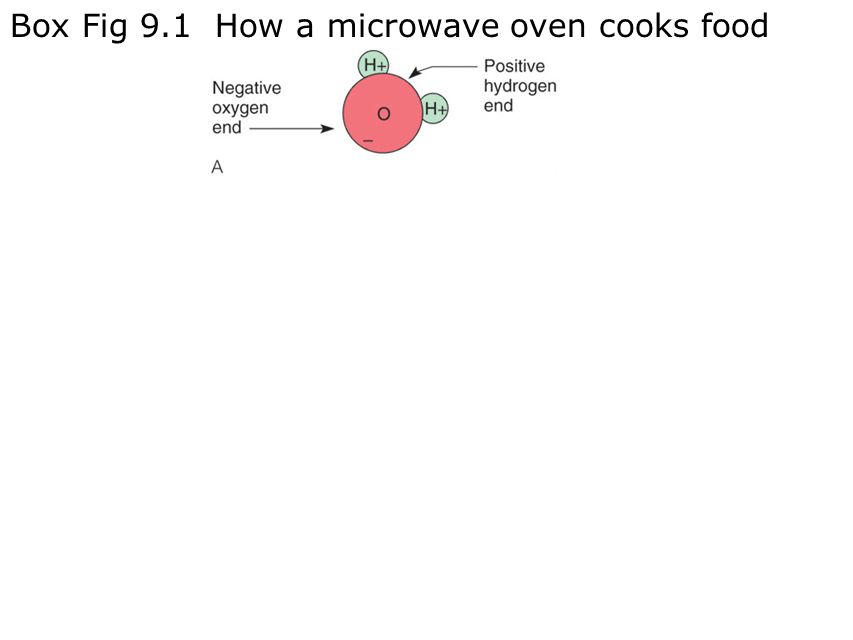 Box Fig 9.1 How a microwave oven cooks food