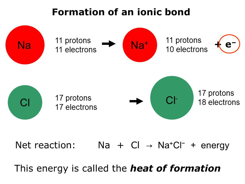 Na 11 protons 11 electrons Na + 11 protons 10 electrons Cl 17 protons 17 electrons Cl - 17 protons 18 electrons Formation of an ionic bond + e − Net reaction: Na + Cl → Na + Cl − + energy This energy is called the heat of formation
