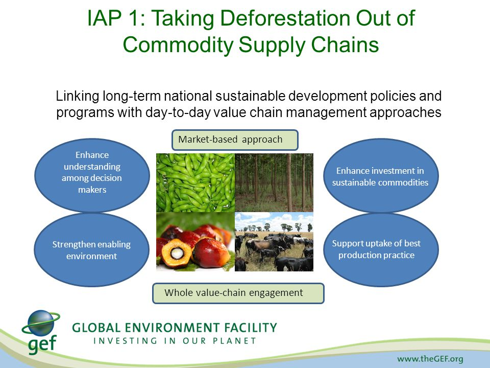 IAP 1: Taking Deforestation Out of Commodity Supply Chains Linking long-term national sustainable development policies and programs with day-to-day value chain management approaches Enhance understanding among decision makers Strengthen enabling environment Support uptake of best production practice Enhance investment in sustainable commodities Market-based approach Whole value-chain engagement